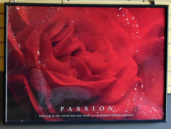 """Large Framed Photographic Print of Rose, """"Passion"""" by Prints Plus"""