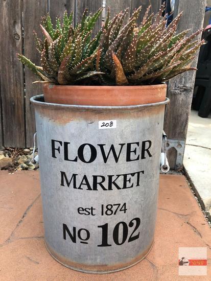 "Yard & Garden - terra cotta potted cactus in flower market tin 12""hx10""w, double bale handled (19""h)"