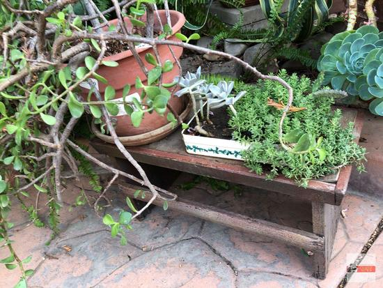 """Yard & Garden - plastic planter pot 11""""hx8""""w (21""""h) & tin with succulents on sm. wooden bench 21.5"""""""