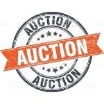 Auction Connexion