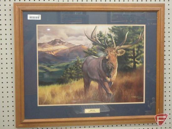 Framed and matted print by Dustin Van Wechel, Estes Elk, 26inHx32inW