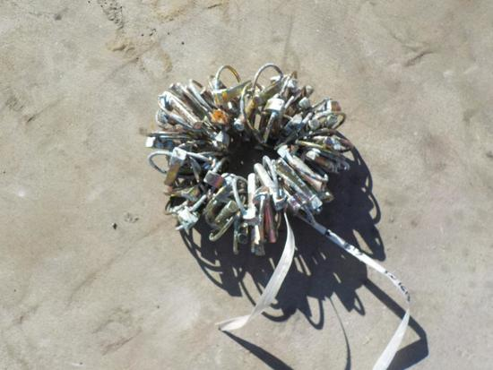 Ford Lynch Pins (50 of)