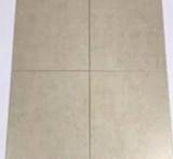 Sketches Parchment