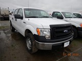 2014 FORD F150XL PICKUP TRUCK, 173,277 miles  4X4, CREW CAB, V8 GAS, AT, PS