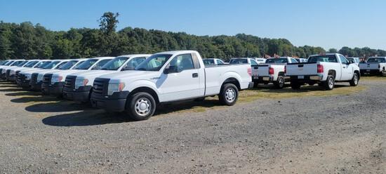 Cars, Pickups, SUv & Flatbeds