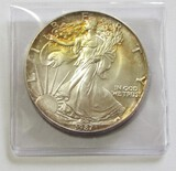1987 American Silver Eagle Gorgeous Toning