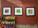 (3) framed prints measuring 26 in X 26 in