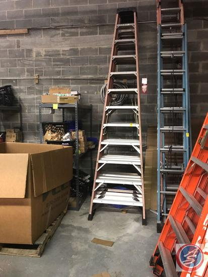 {{TIMES THE MONEY}} (3) Werner Step Ladders