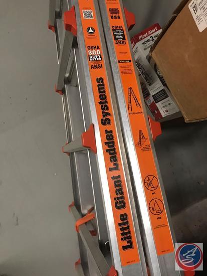 Little Giant Ladder Systems Type 1E Model 21