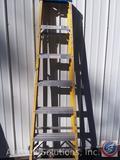 Werner 7' step Ladder