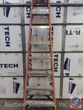 Werner 10' step Ladder