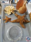 Sea Shell Decorations