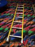 Werner 8 Foot Hook Ladder