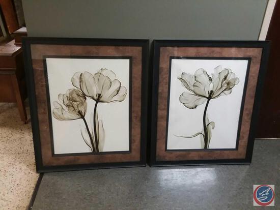 "(2) Framed Prints By Steven Meyers ""Parrot Tulips"" 33"" X 39"""