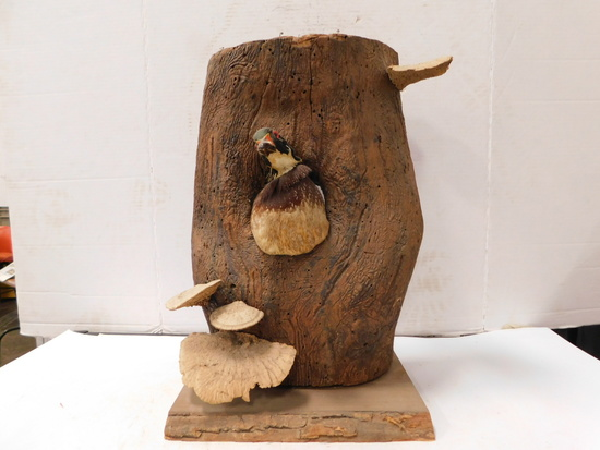 WOOD LOG WITH TAXIDERMY WOOD DUCK
