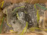 Plastic Tote W/Machined Screws, Nuts, & Nails