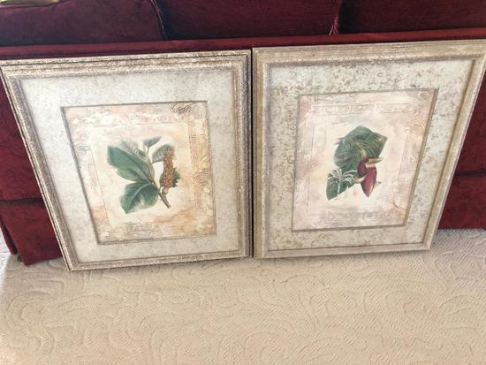 Pair Of Matching Matted & Framed Flora Prints