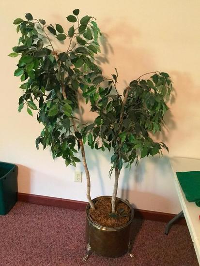 Silk Plant Tree W/Planter