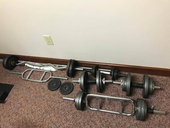 Weights: 110 Lbs. Of Iron Weights + Variety Of Dumbells & Curl Bars