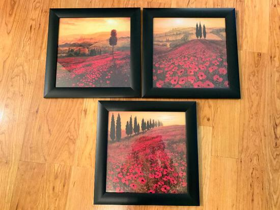(3) Framed Prints Of Poppy Fields In Italy
