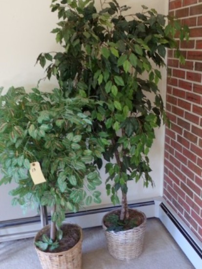 PAIR ARTIFICIAL TREES IN BASKETS APPROXIMATELY 4 FEET AND 5 FEET