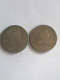 1857 & 1858 Flying Eagle Cent Lot