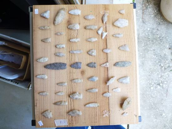 (47) Arrowheads found on Long Island along the