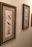 (2) Framed & Matted Prints--15