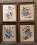 (4) Framed Arthur Singer Bird Prints--12 1/4