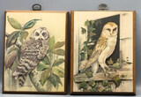 (2) 3-Dimensional Wooden & Metal Owl Wall