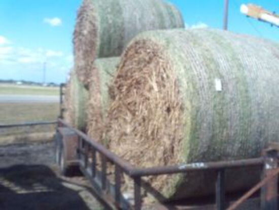MILO HAY WITH SEED ROUND HAY BALES