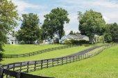 Johnny Depp Kentucky Farm - 5493 Versailles Road