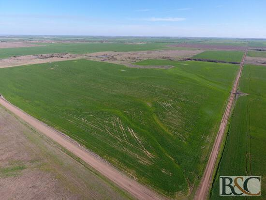 Foster Land Auction - 160 Acres in Harper County Kansas
