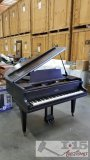 Waterman Baby Grand Chicago Piano
