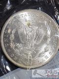 1884 Morgan Silver Dollar Philadelphia Mint, Uncirculated