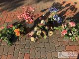 Beautiful Artificial Flowers and Plants