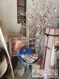 Canopy, Ladder, Dolly, Pet Crate, and More