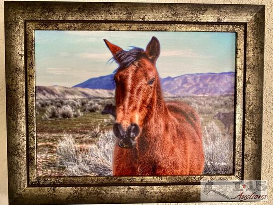 """Freddy"" Print on Canvas by Rhonda Graham. Lot # 16 in Auction"