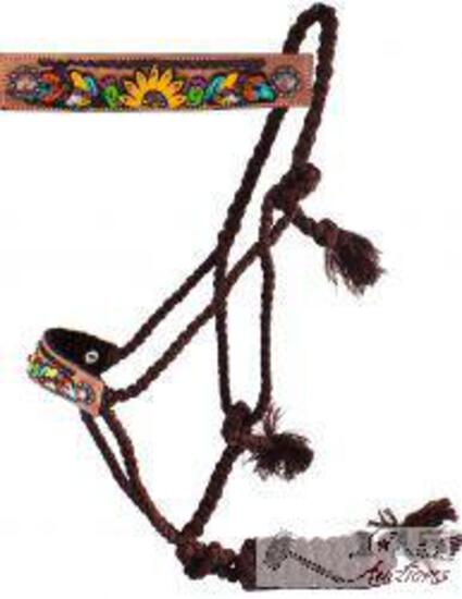 Woven brown mule tape halter with hand painted feather, sunflower and cactus noseband