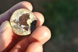 101.23 Carat Huge Ethiopian Chocolate Opal Rough