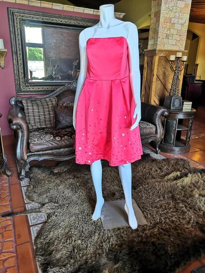 NIGHT DRESS. BRAND DAVID'S BRIDAL. SIZE 16. PRICE $250