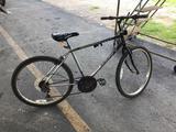 2 Bicycles (Green, Gray/Black)