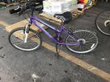 1 Bicycle (Purple)