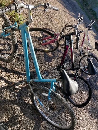 (3) Bikes, Blue 21 Speed Magna Bike, Black w/Pink Side