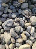 Lot w/River Rocks