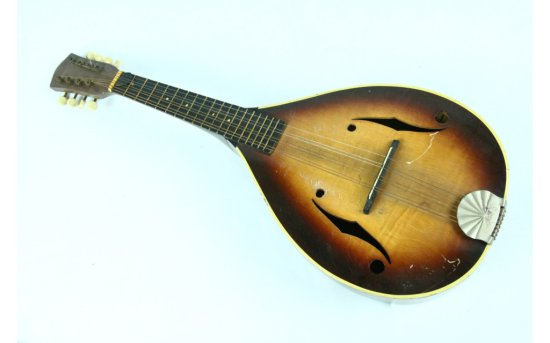Mandolin Musical Instrument