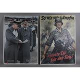 Nazi Promo Posters David Irving (2)