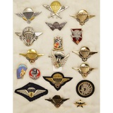 Lot of French Paratrooper Insignia