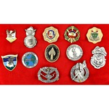 Lot of 12 US Badges
