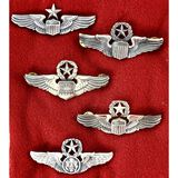 Lot of 5 US Air Force Wings